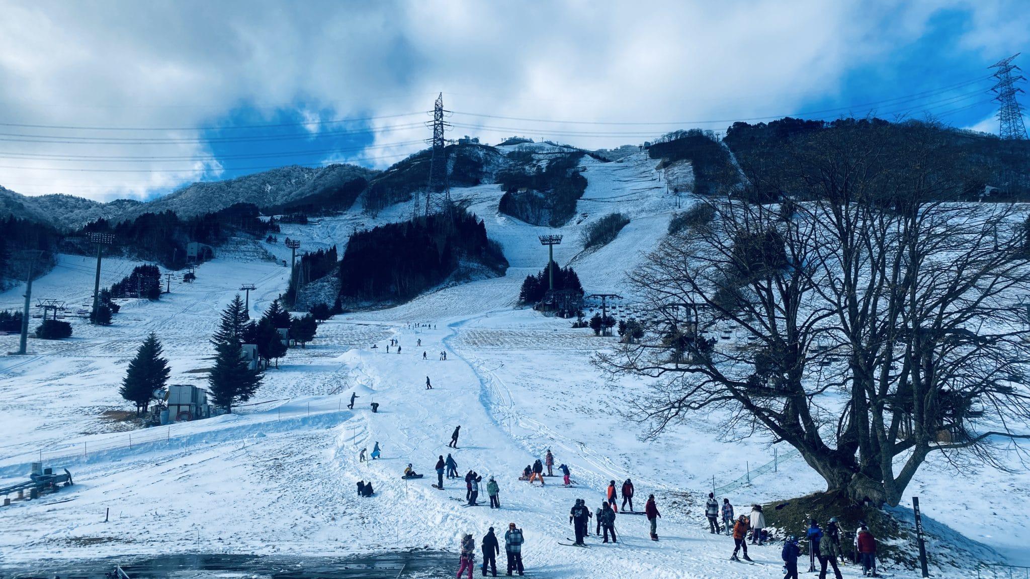 新潟県スキー連盟・トレーニング講習会